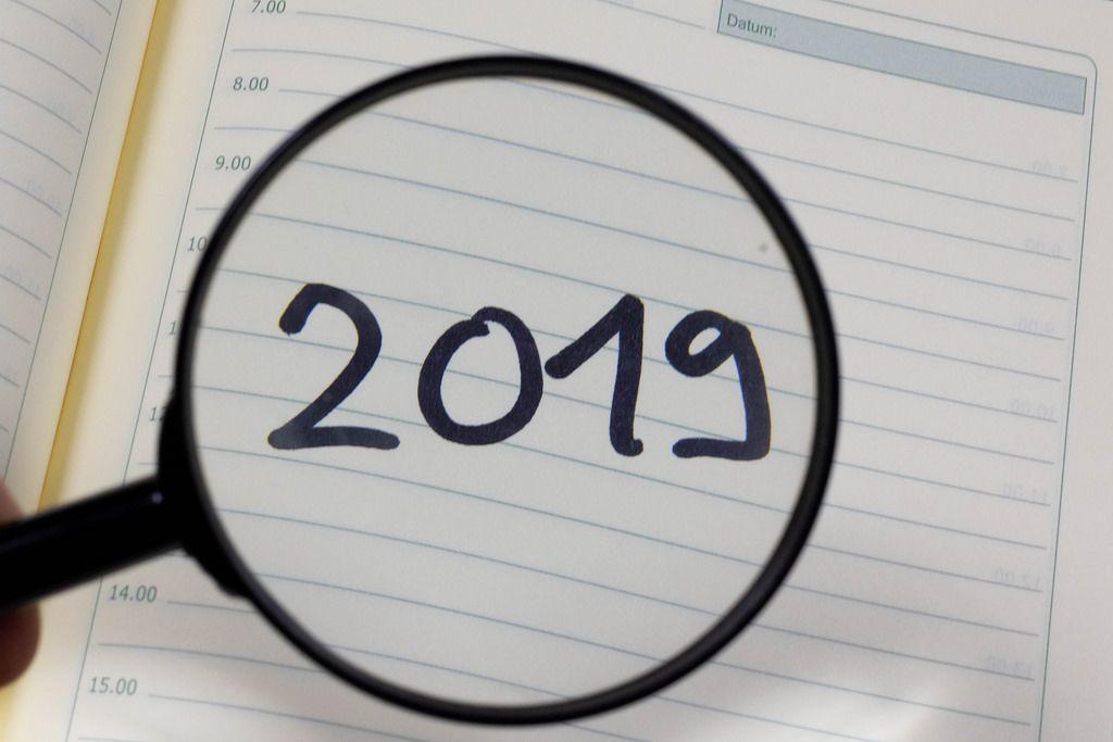 2019 through magnifier