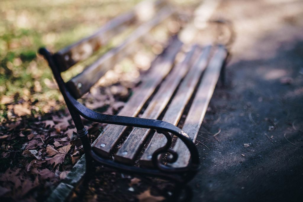 A bench in a park with bokeh background