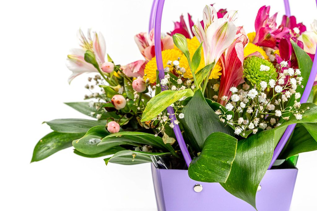 A bouquet of multicolored flowers on a white background