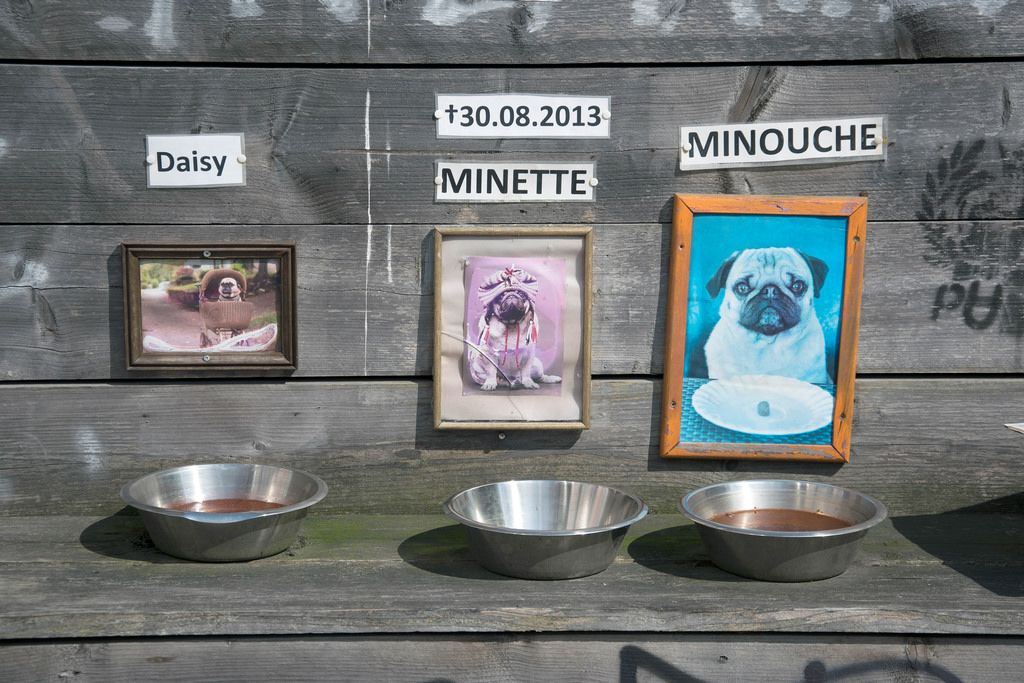 A feeding area for dogs outside a fun Mopse Bar in Berlin, Germany