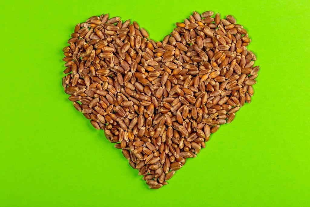 A grain of wheat in shape of heart on green background (Flip 2019)