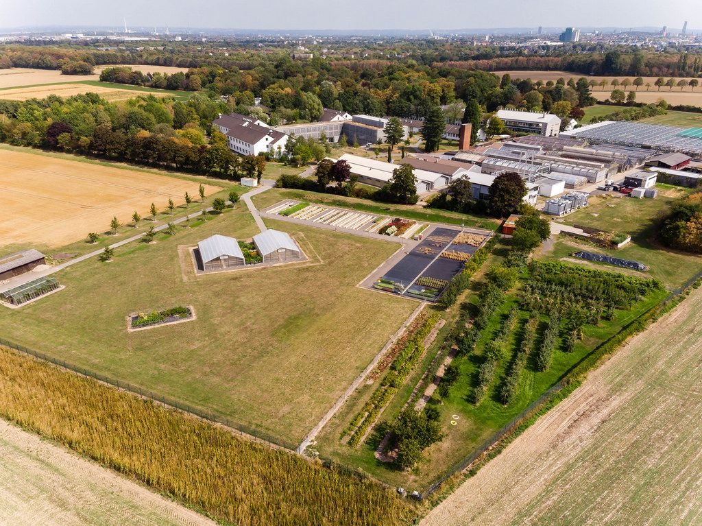 Aerial photo of Max Planck Institute for Plant Breeding Research