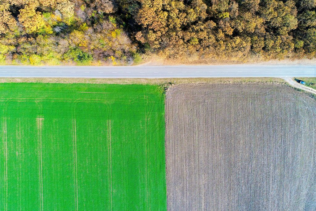 Aerial view of road between field and forest