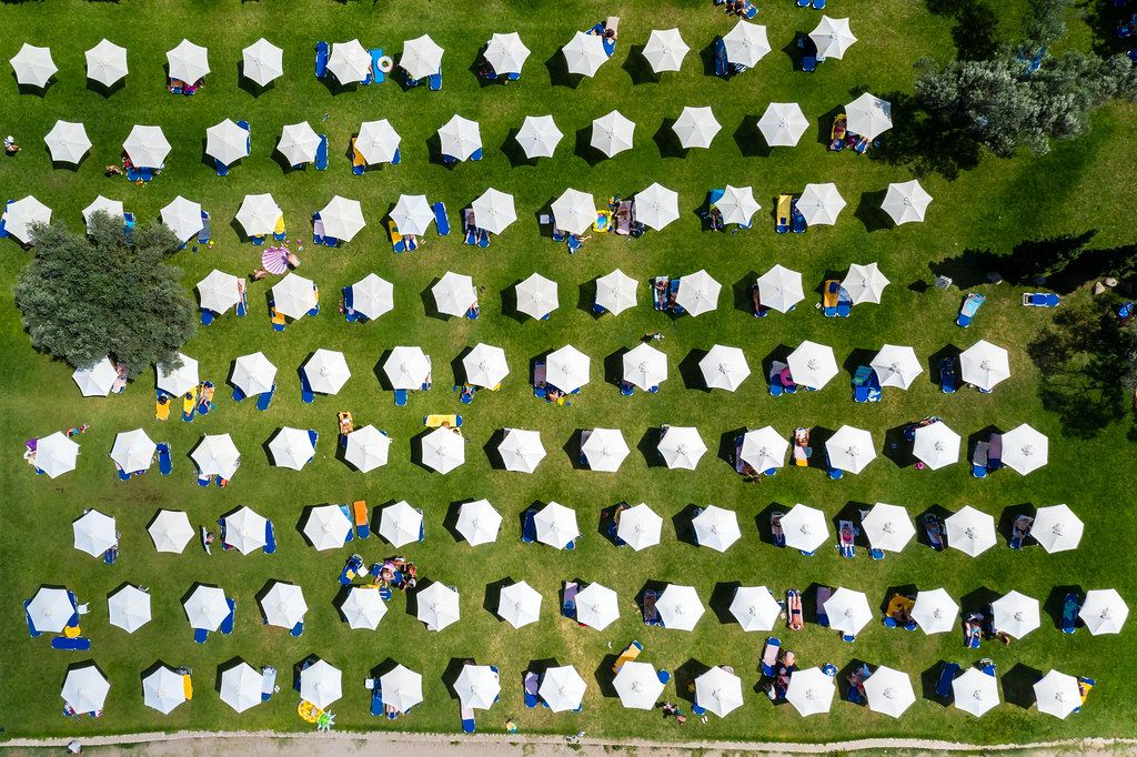 Aerial view of white parasols in several rows on a green meadow