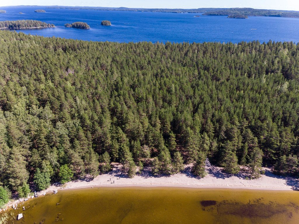Aerial view shows different water colours and the island Kelvenne with its beach and bays at Lake Päijänne