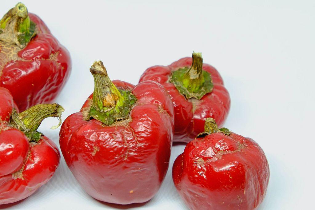 Alte, runzlige rote Paprika vor weißem Hintergrund