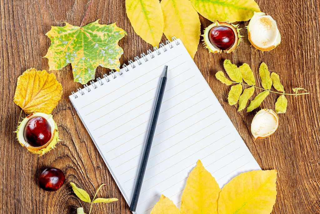 An empty notebook and a black pencil on a brown wooden background with yellow leaves and chestnuts