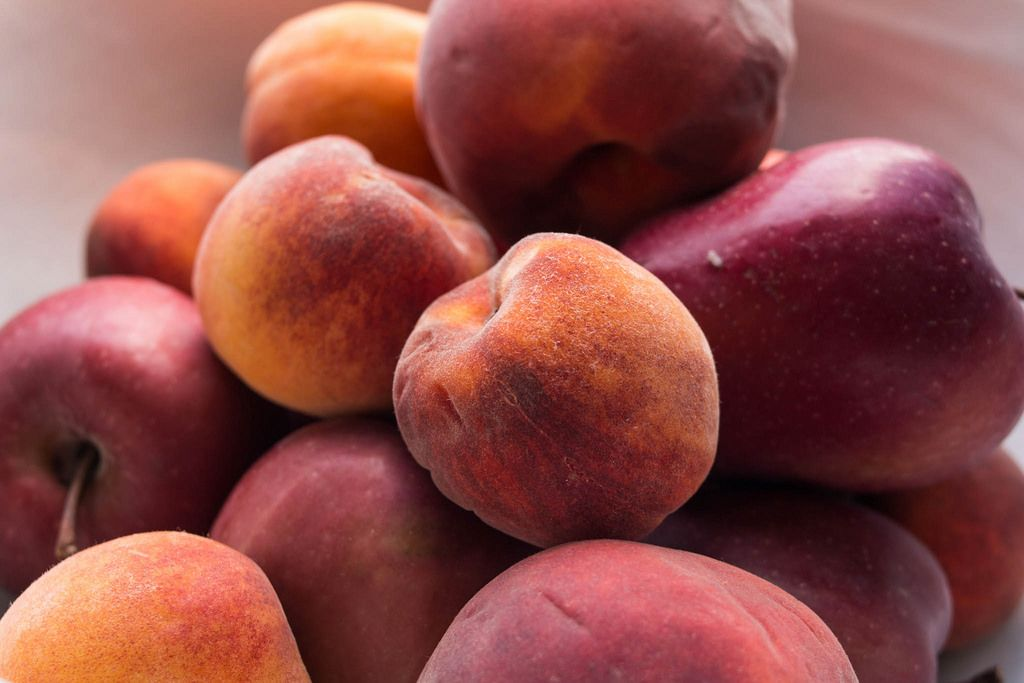 Apricots and Apples, Summer Fruits