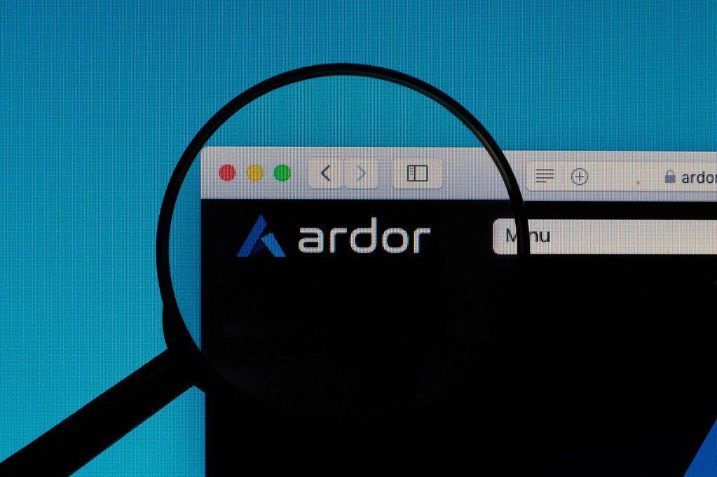 Ardor logo under magnifying glass