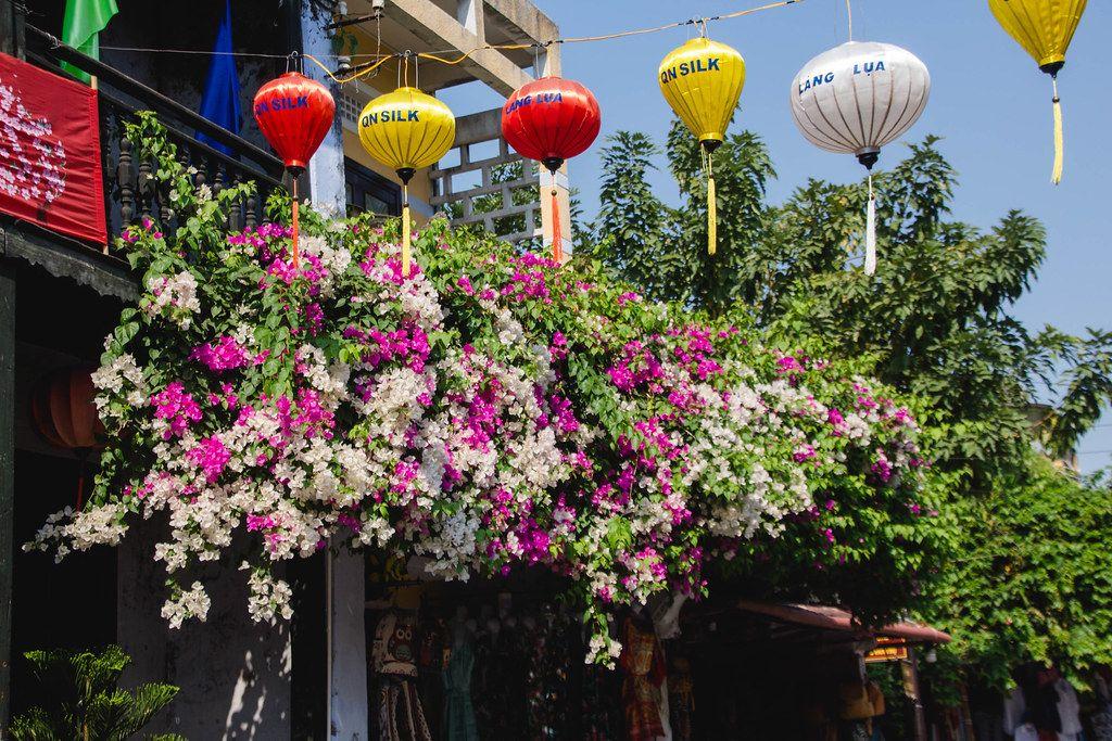 Asiatischer Straßenschmuck mit Seiden-Laterne an einer Girlande in Hoi Ann, Vietnam