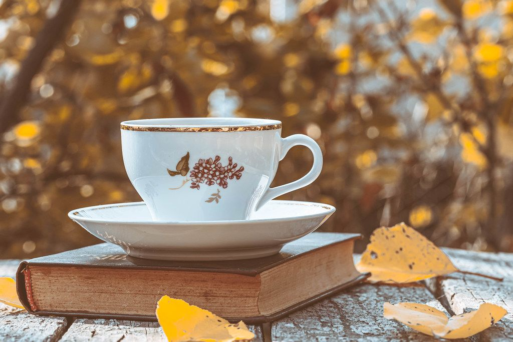 Autumn background with a book, a Cup of tea and leaves on the background of blurred autumn trees (Flip 2019)