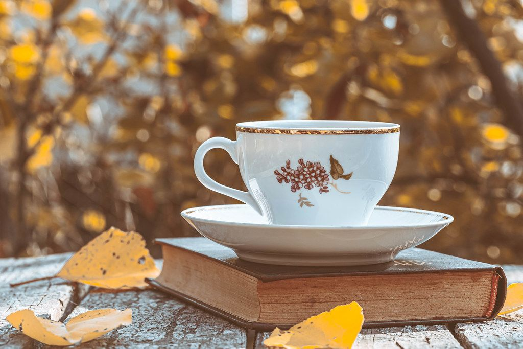Autumn background with a book, a Cup of tea and leaves on the background of blurred autumn trees