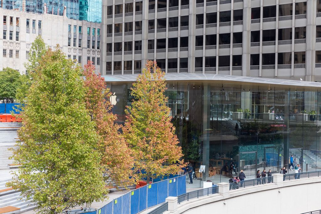 Autumn colors in Downtown Chicago: trees with reddish-green leaves between high-rise buildings at the Chicago Riverfront
