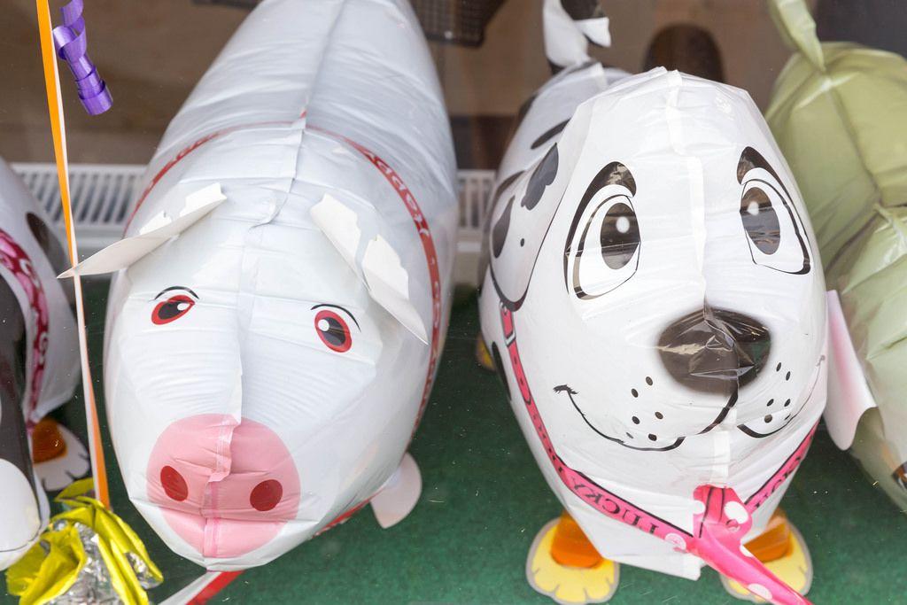 Ballons: Schweinchen und Hund
