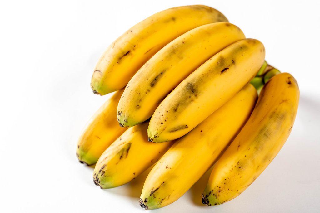 Banana branch