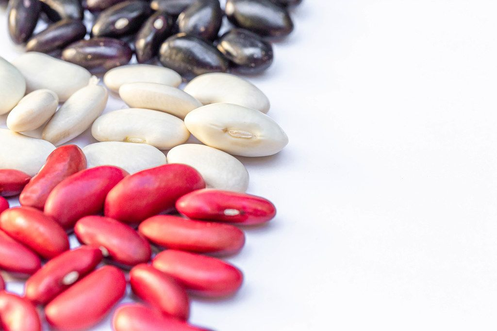Beans of different varieties on a white background