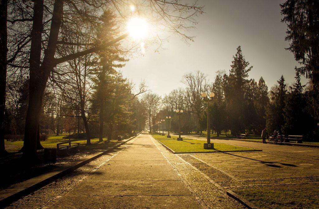 Beautiful park in Maribor