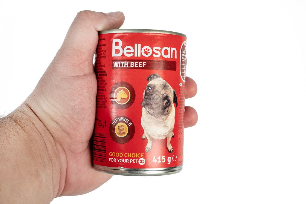Bellosan Dog Food can in the hand with copy space above white background
