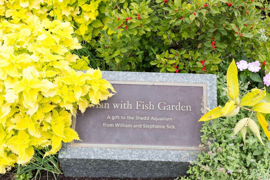Beschreibung der Statue Man with Fish Garden im Shedd Aquarium