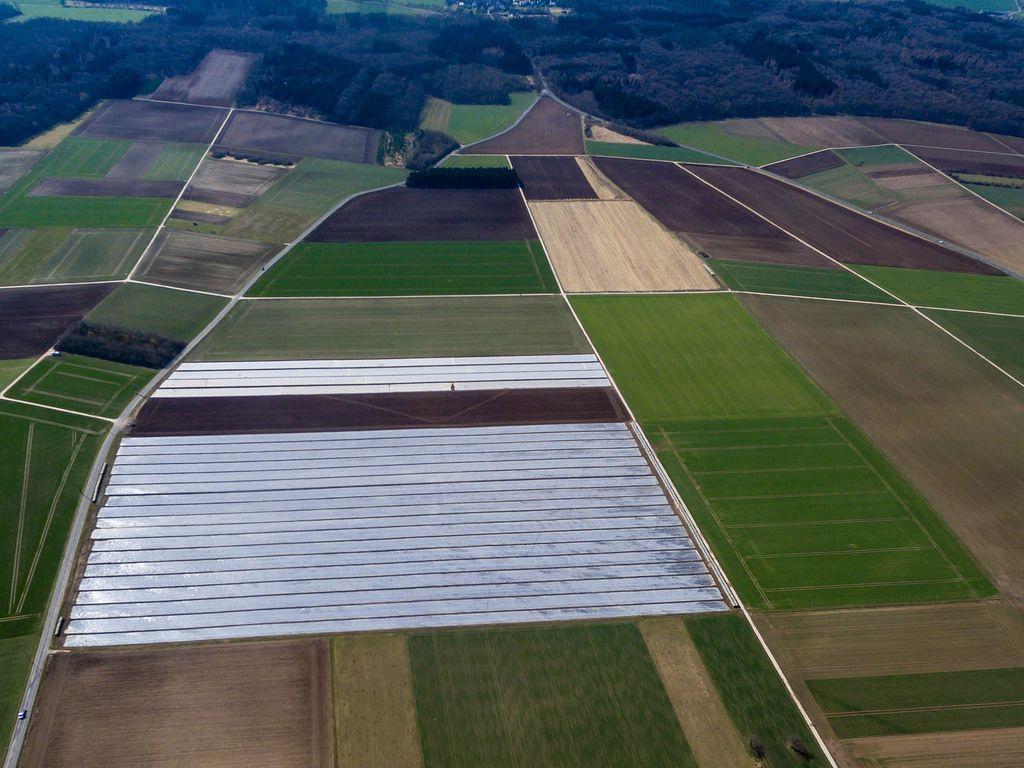 Bestellte Felder und ein Feld unter Folie - Luftbildaufnahme