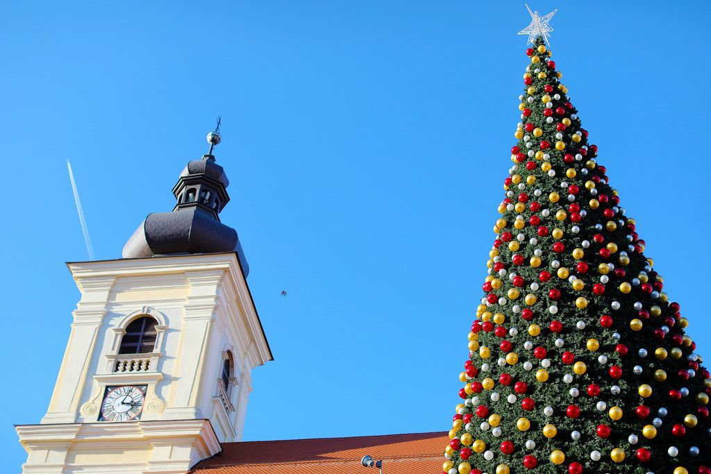 Big Christmas tree and a clock tower in Sibiu, Romania