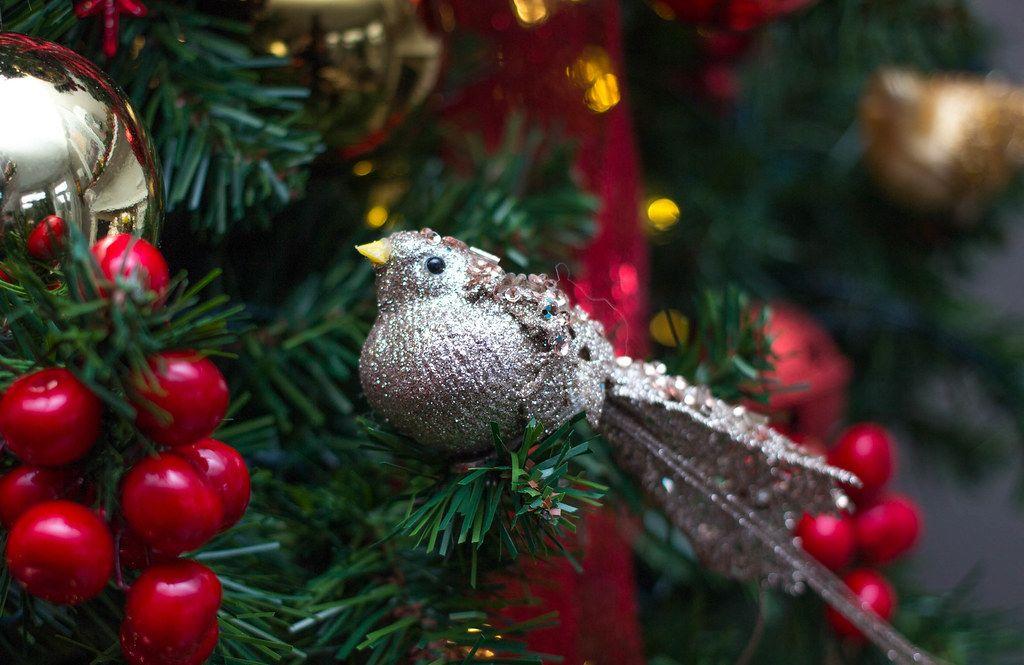 Bird Christmas  ornement  (Flip 2019)