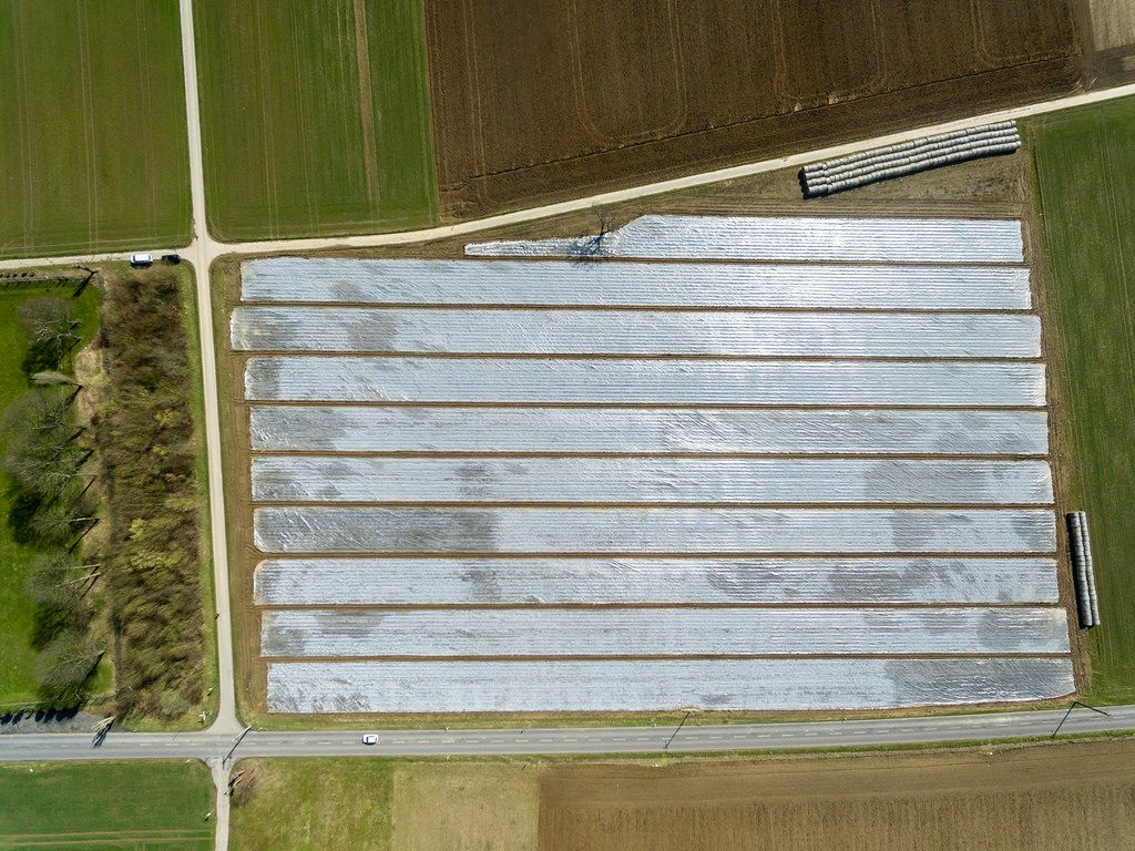 Bird's eye view of a field under foil