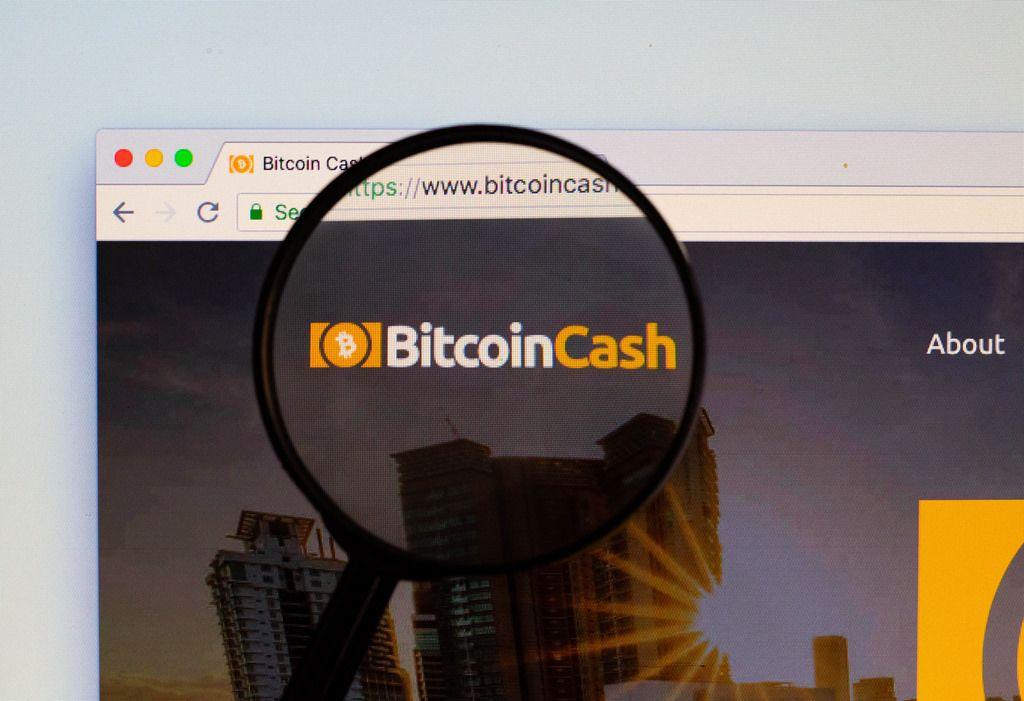 Bitcoin Cash Logo am PC-Monitor, durch eine Lupe fotografiert
