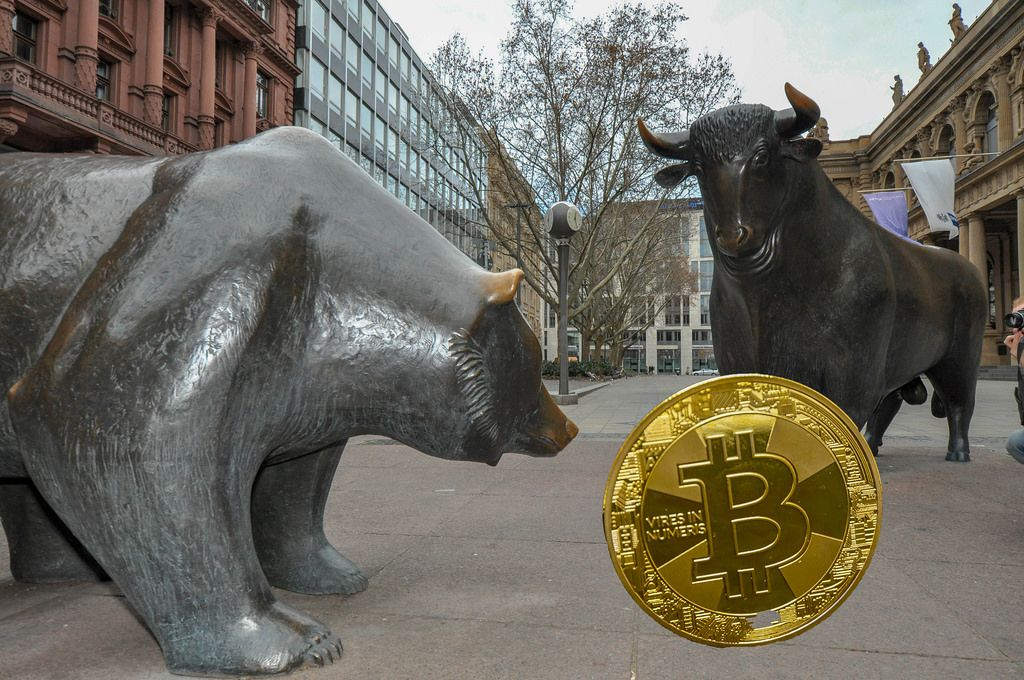 Bitcoin Market Trends: Bull Run vs. Bear Market
