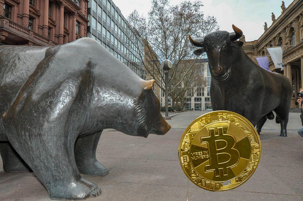Bitcoin Market Trends: Bull Run vs. Bear Market