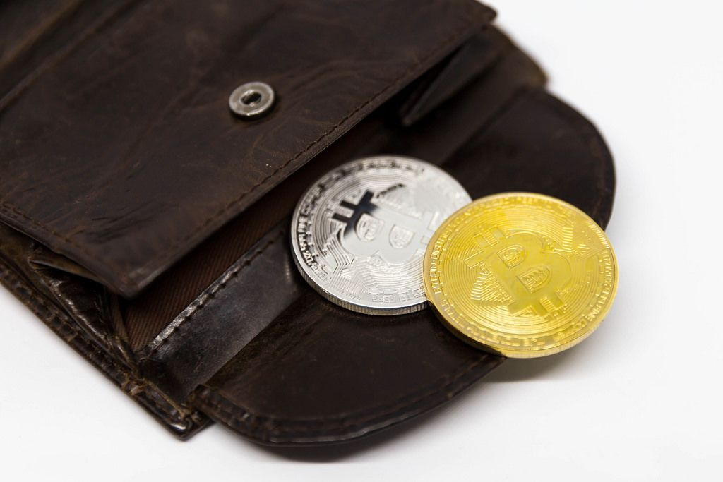 Bitcoins in a physical Wallet