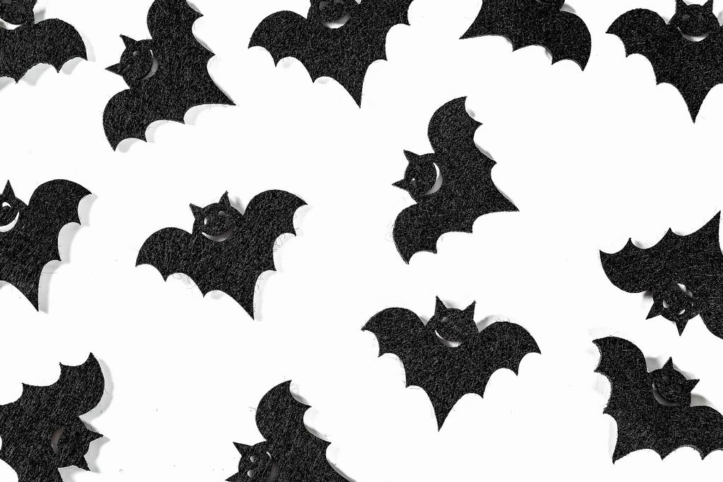 Black bats on white background for Halloween