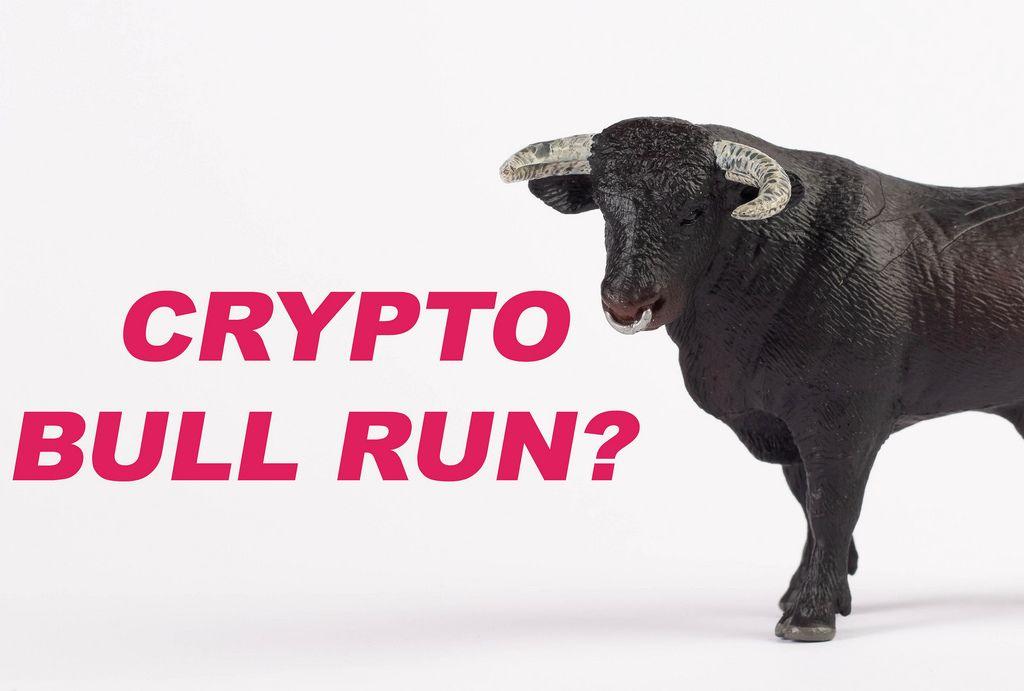Black bull with Crypto bull run text