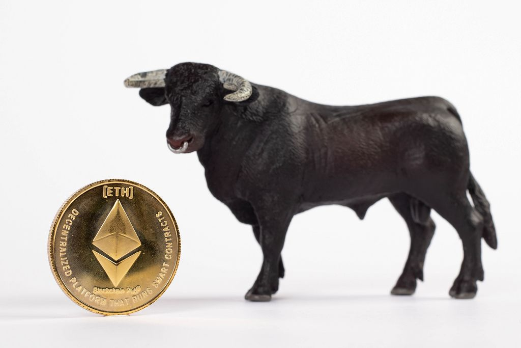 Black bull with Ethereum coin isolated on white background