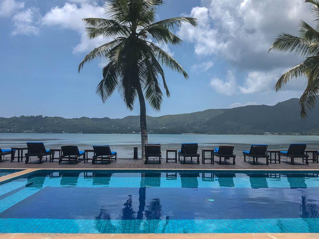 Blauer Pool mit Liegestühlen unter Palmen des