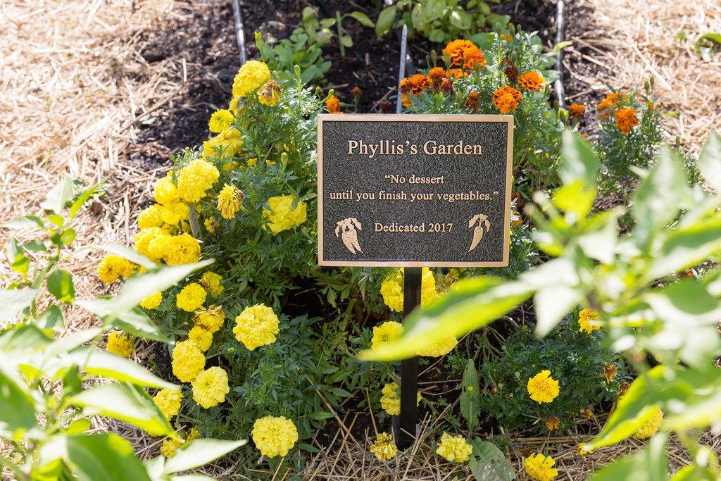 Blumen im Phyllis's Garden im Old Town Triangle
