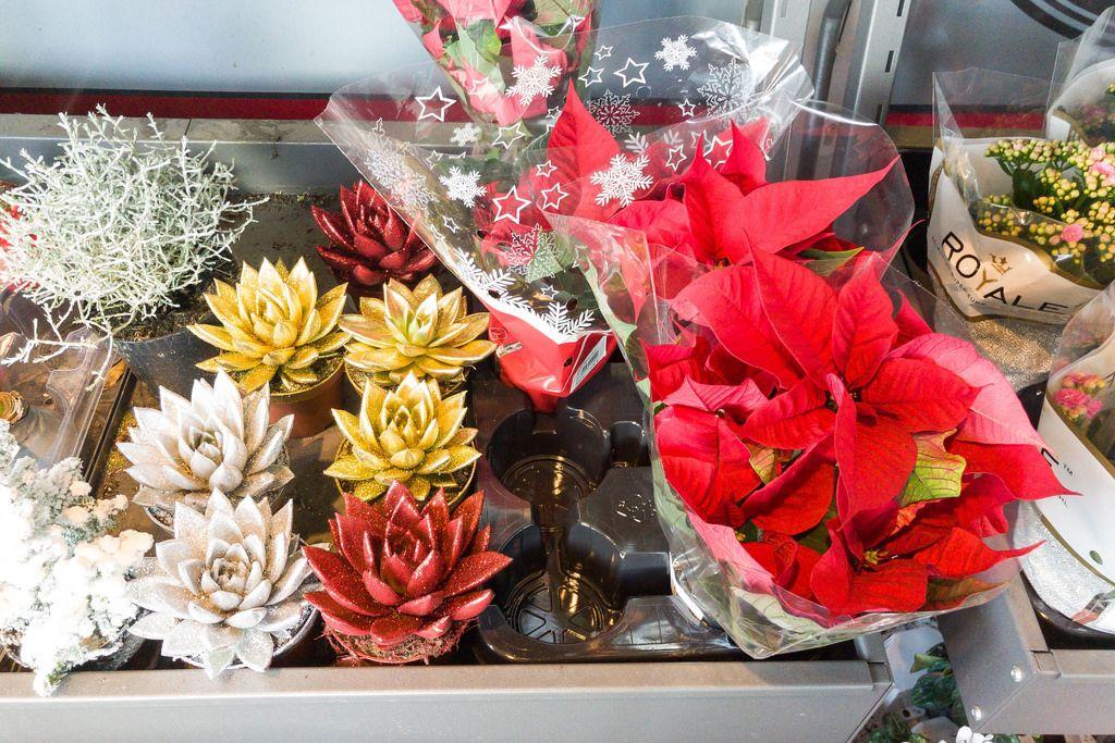 Blumen und Deko im Supermarkt