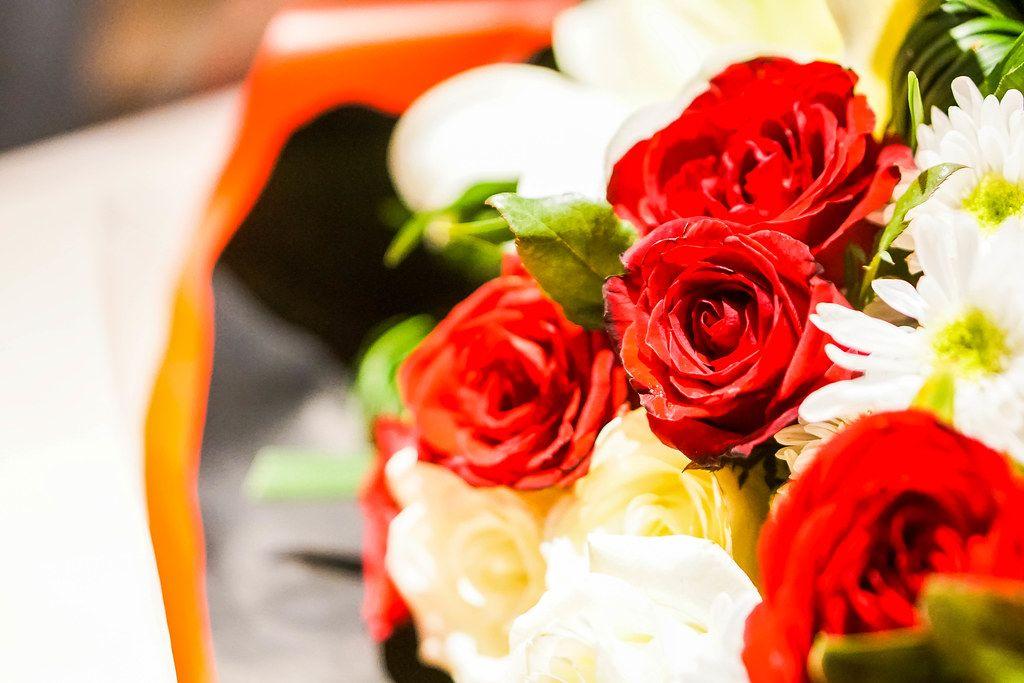 Bokeh shot of a red rose