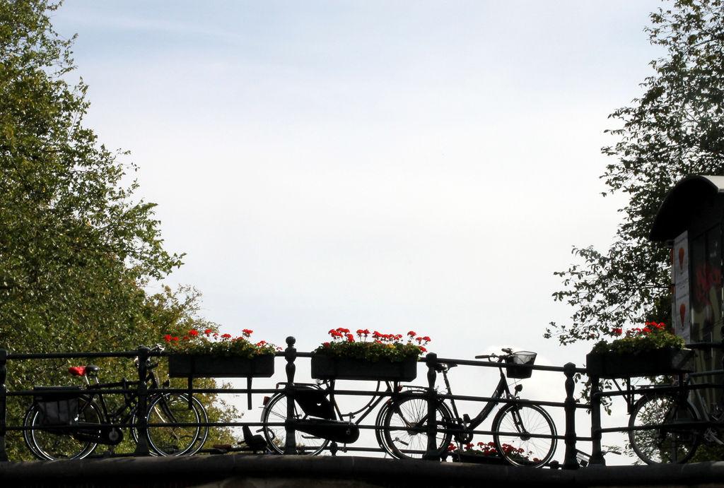 Brücke in Amsterdam