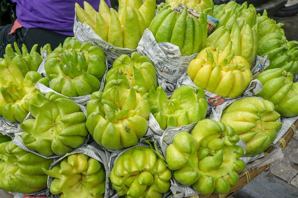 Buddha's Hand Fruit sold from a Bicycle on the Streets of Hanoi