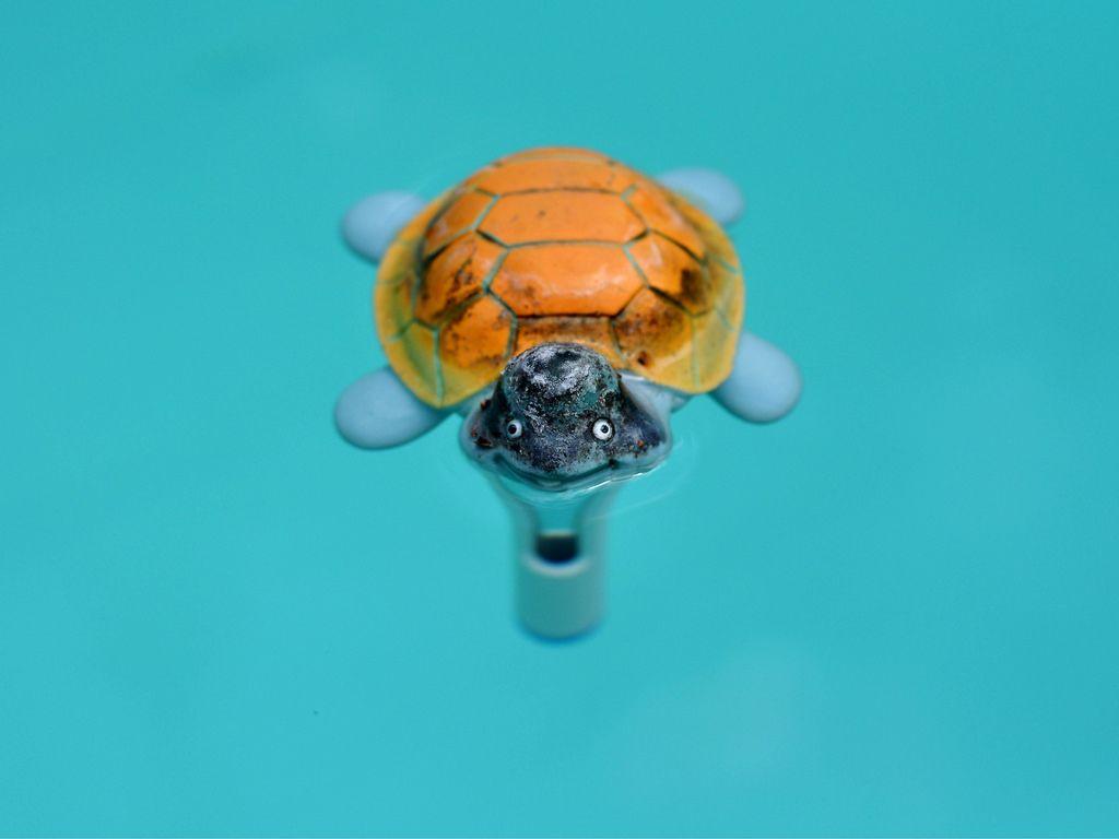 Bunte, künstliche Schildkröte im Wasser
