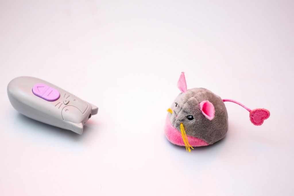 Cat Mouse Toy with Remote