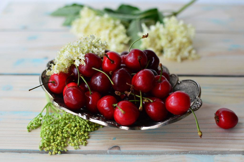 Cherries and a flower of elderberry