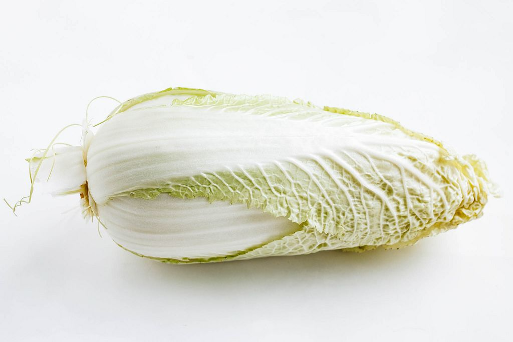 Chinese Green Cabbage on white background