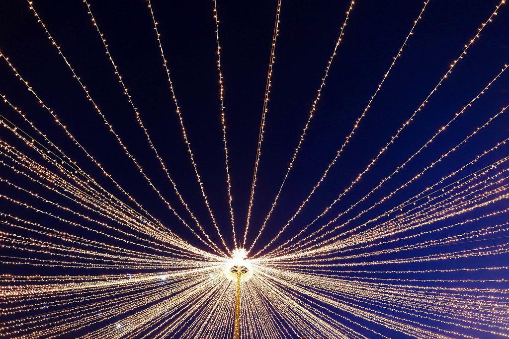Christmas lights, star shape (Flip 2019)