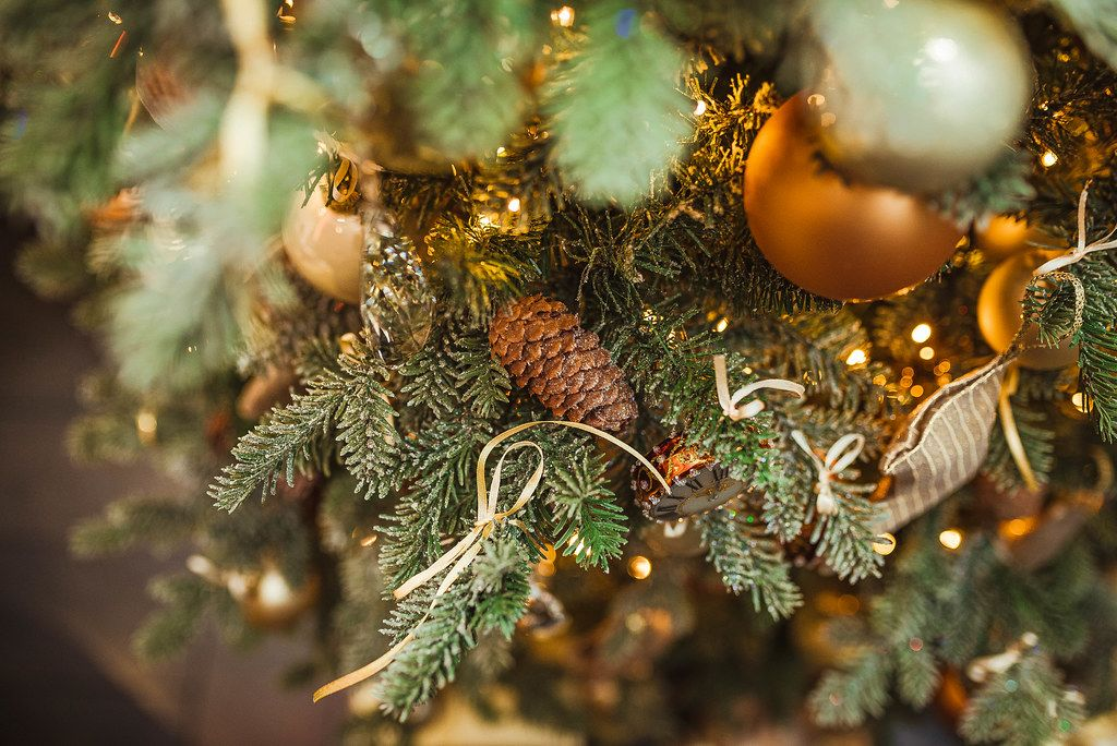 Christmas Pine With Golen Balls And Lights
