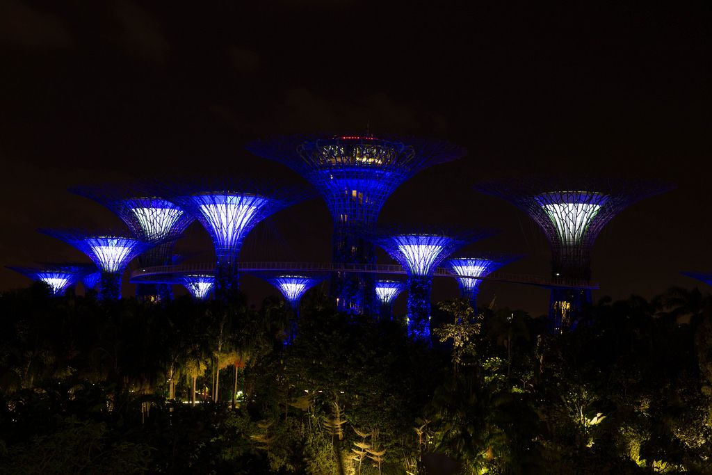 City Forest in Singapur bei Nacht