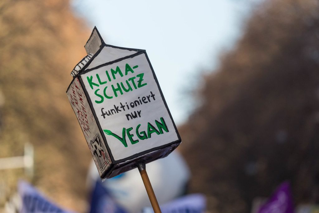 Climate protection is only possible vegan on a big milk box at Fridays for Future in Cologne