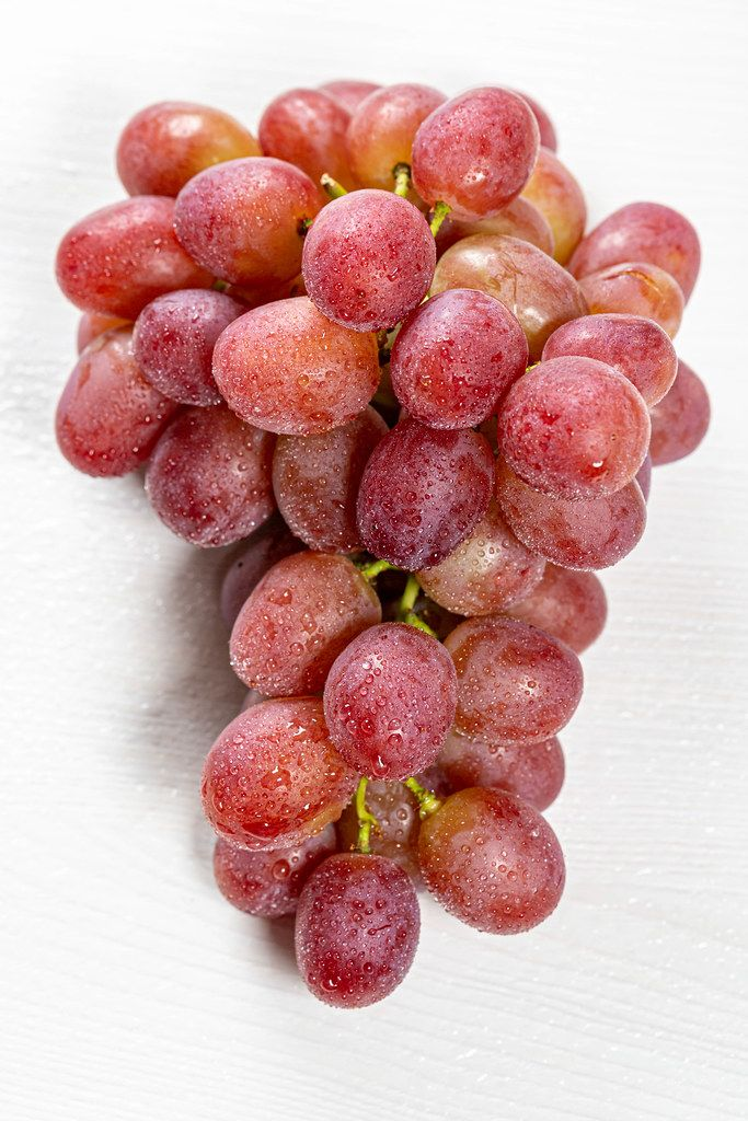 Close-up of a branch of ripe grapes with drops of water