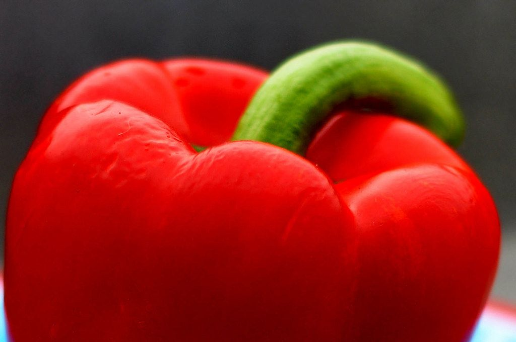 Close-up of a red capsicum